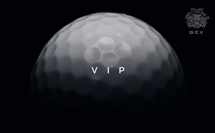 VIPBonus